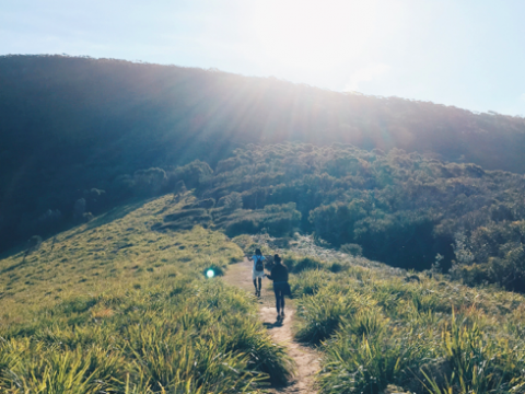 10 Scenic Sydney Walks You Need To Embark On Right Now