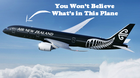 Why Air New Zealand's Dreamliner Will Make You The Coolest Traveller Of The Year