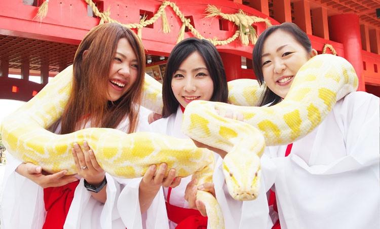 Okinawan girls for dating
