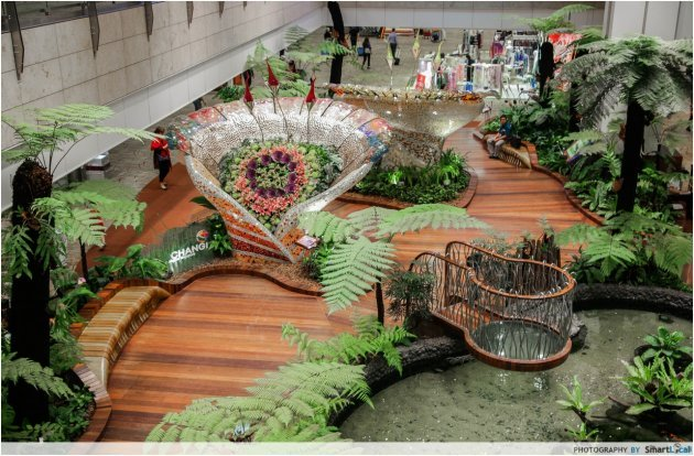 16 secret things to do at changi airport that will make for Indoor gardening singapore