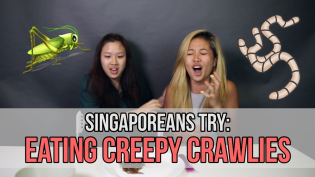 For The First Time In Our Lives, We Ate Mealworms, Crickets, And Grasshoppers! Singaporeans Try : Episode 43