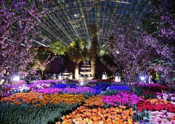 The Spectacular Tulipmania Brings Us 35,000 (!!!) Tulips In A 22°C Dome