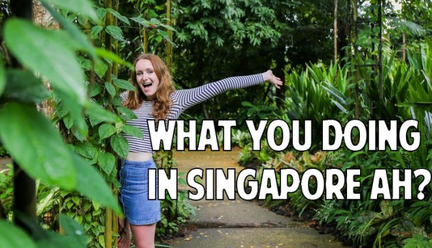 should we ban singlish in singapore / my family used to own one of the biggest pig farms in singapore we supplied pork to bak kwa shops, so they used to give us free samples  ban mian /bahn meeairn .