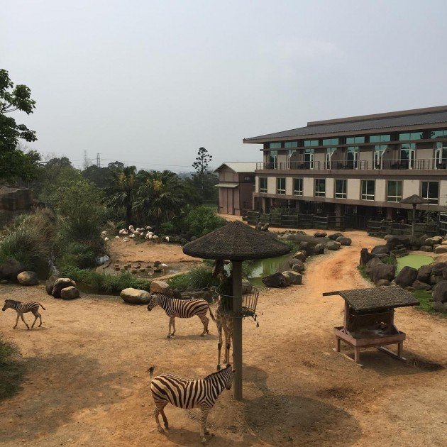 This Resort In Taiwan Is Built Within A Safari And Fits Up