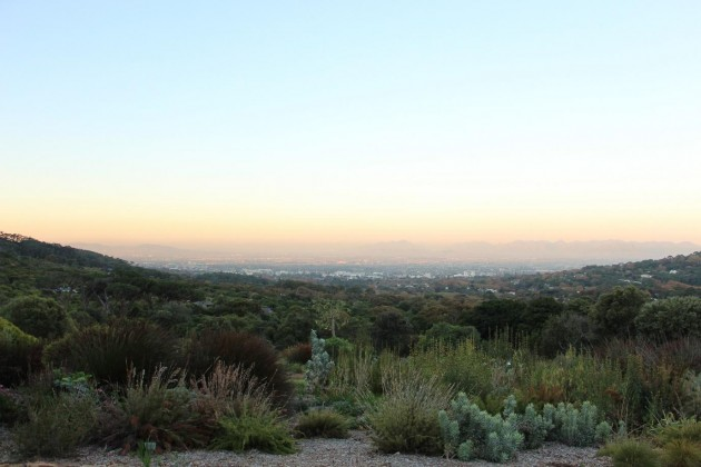 Botanical Gardens and a Sunset