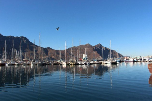 Boats at Hout Bay Harbour