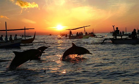 Sunset with dolphins at Lovina Beach