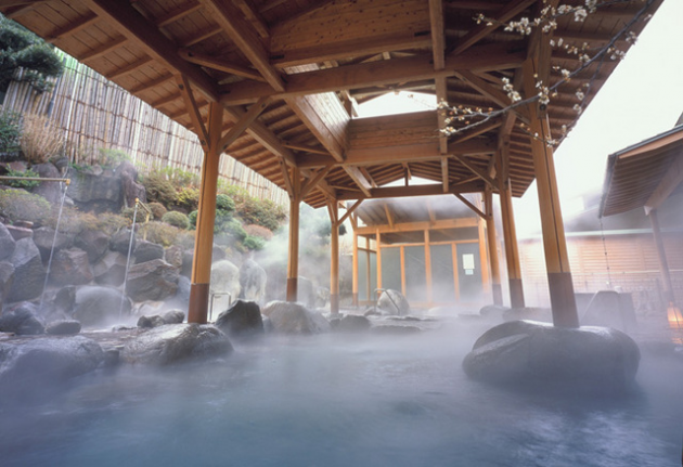 11 Japanese Ryokan Stays To Turn Your Vacation Into A Studio Ghibli Adventure