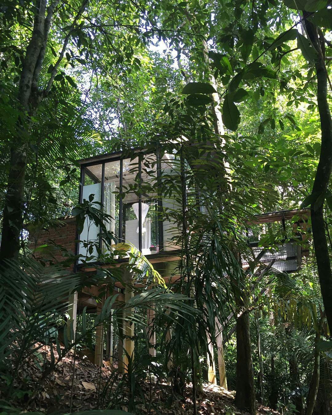 11 treehouse hotels in malaysia for a true escape away for Garden shed johor
