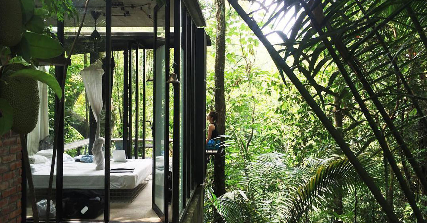 Rainforest hotels