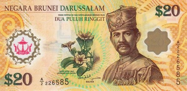 You can use Singapore currency in Brunei