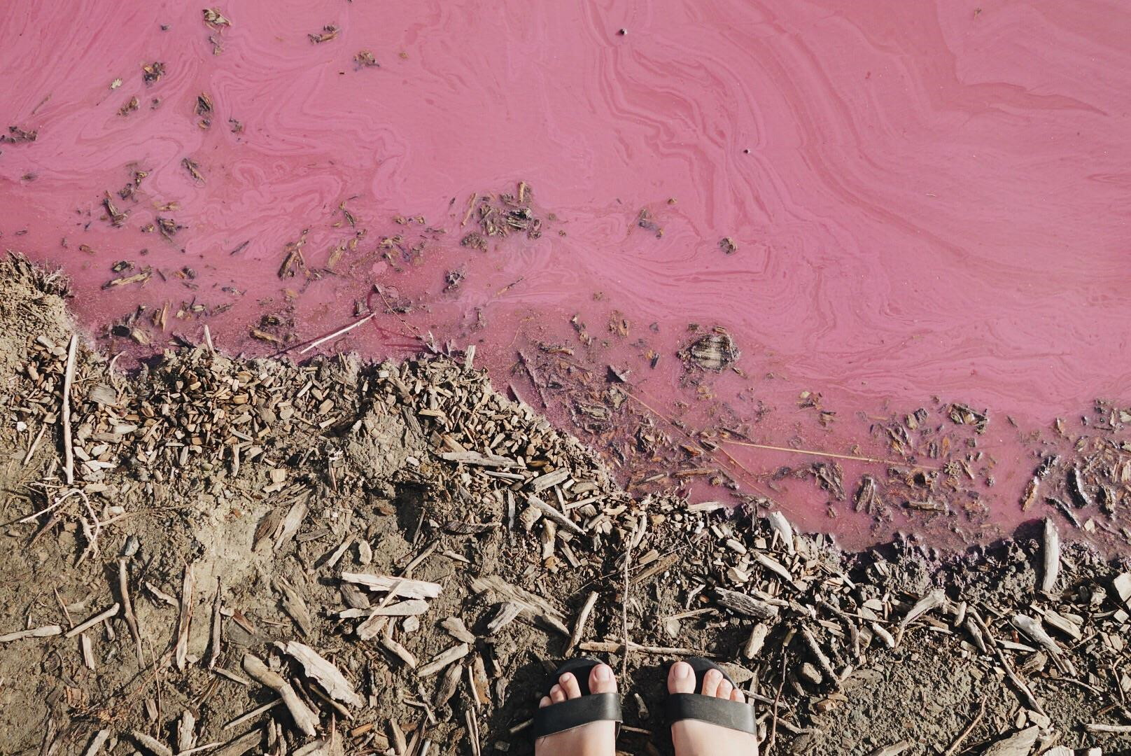 Pink Salt Water Lake, Melbourne