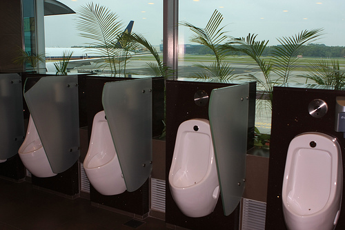 beautiful public toilet changi airport