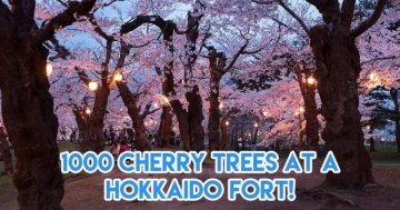 The Ultimate Cherry Blossom Calendar For Japan 2017 Trips
