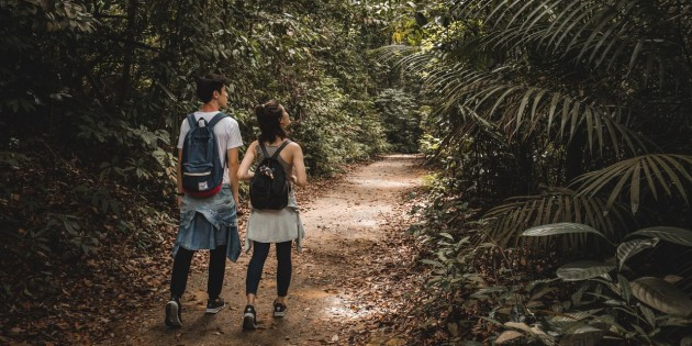 7 Insta-Worthy Nature Trails In Singapore For Fitspo Glory