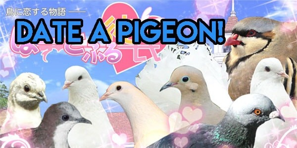 Hatoful Boyfriend Weird Dating Game Cover Image Japanese