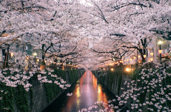 5 Japan Regions To Visit Till June To Take Advantage Of Perfect 20°C Weather