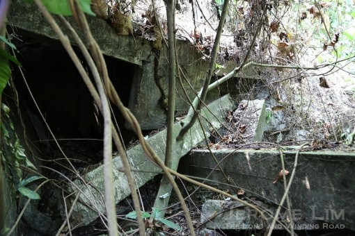 Uncover these hidden collapsed structures