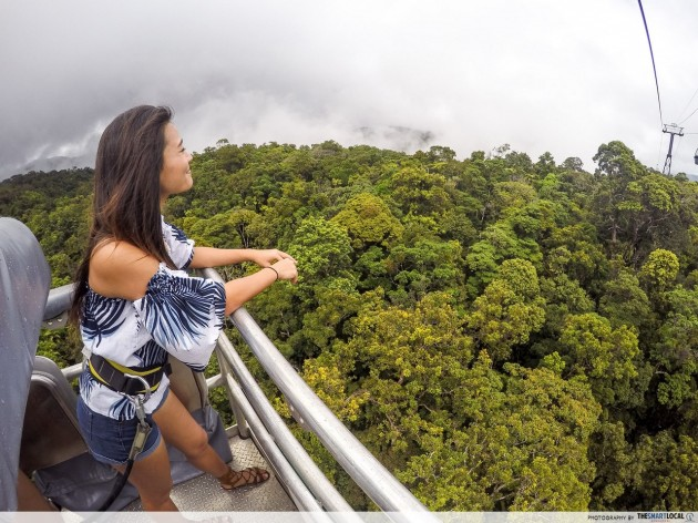skyrail rainforest cableway scenic australia cairns