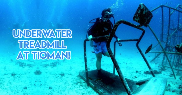 tioman treadmill underwater diving wrecks sculptures sights south east asia singapore