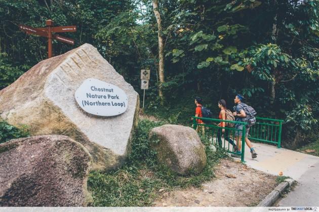 Rock hard nature path