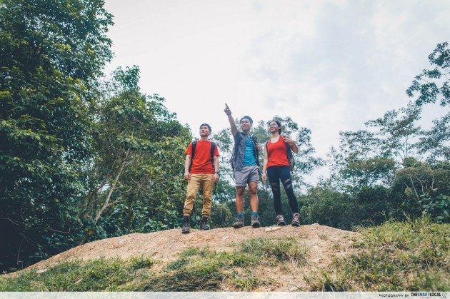 7 Hiking Trails You Can Explore Around The Revamped Bukit Timah Nature Reserve