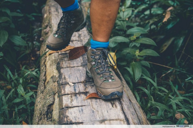 chestnut nature park vasque performance hiking shoes boots singapore