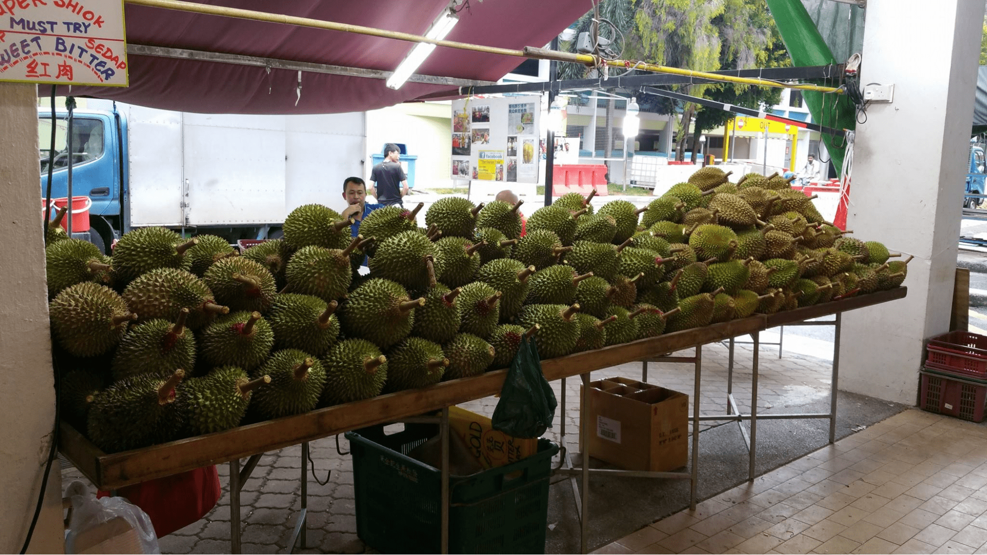 the durian tree