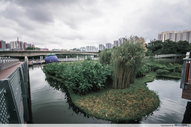 sengkang riverside park floating island running route