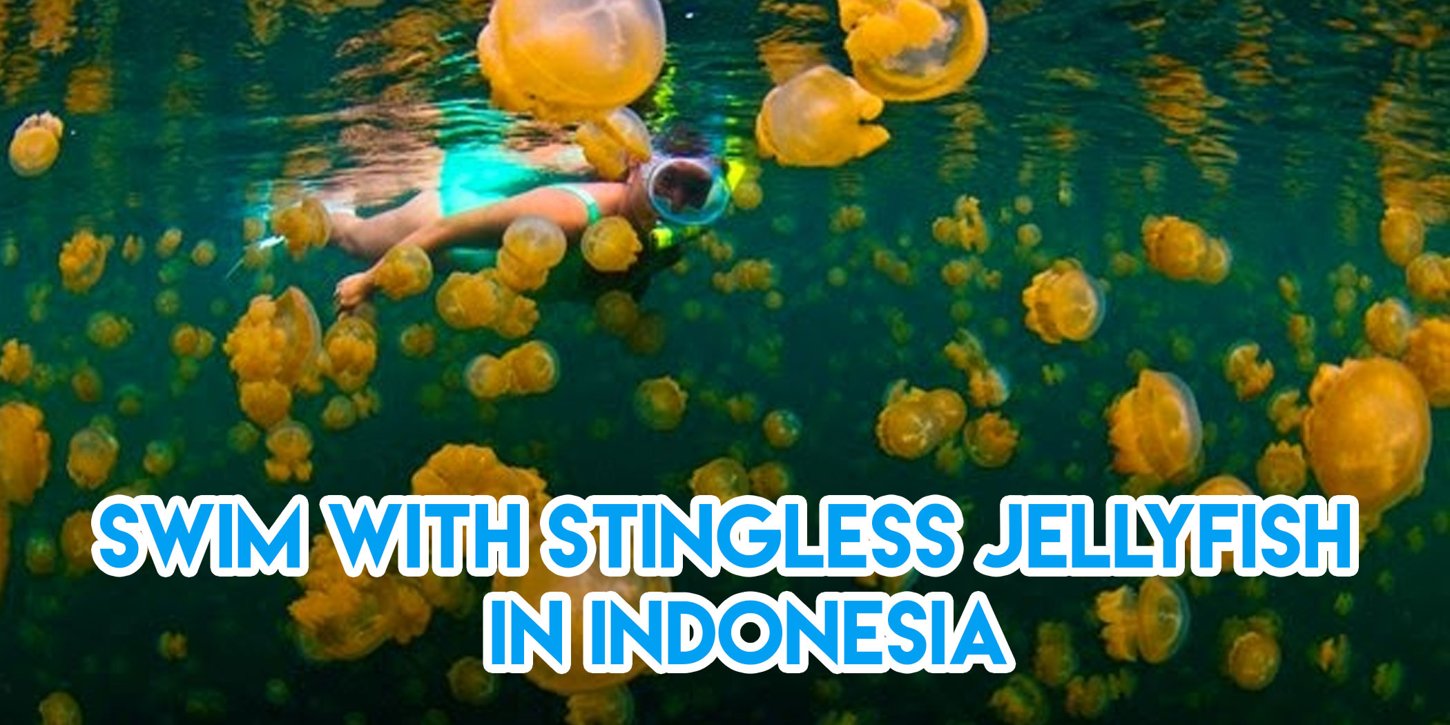 9 Less Explored Snorkelling Sites In Asia Unlike Anything You've Seen In Bali Or Phuket