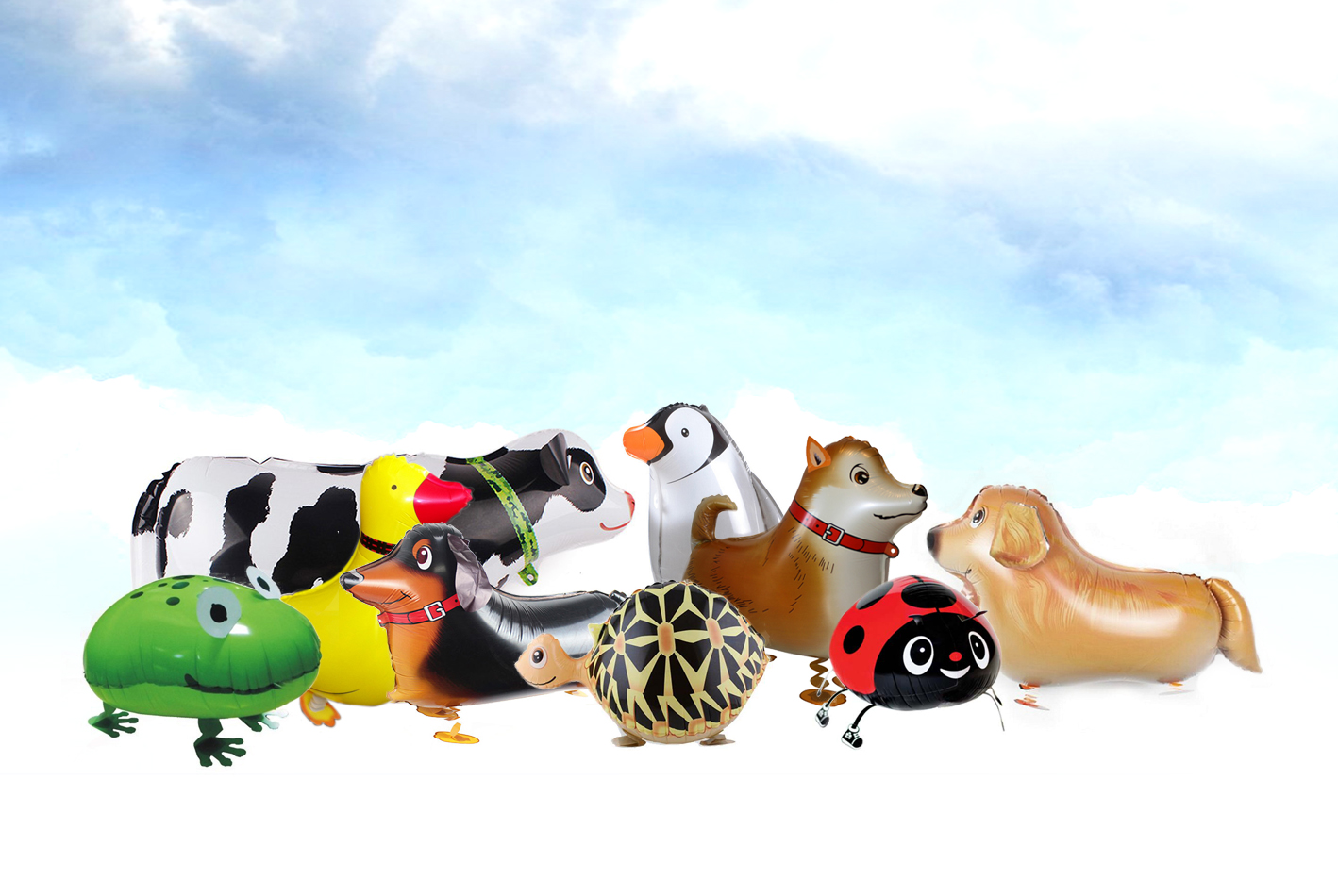 Walking pet balloons by party wholesale centre