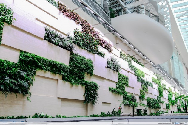 Changi Airport Terminal 4 green wall plants