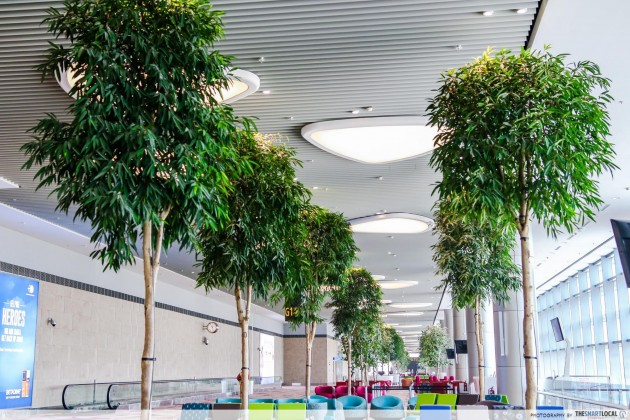 Changi Airport Terminal 4 real indoor trees with underground watering system