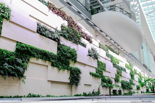 Changi Airport Terminal 4 green wall plants