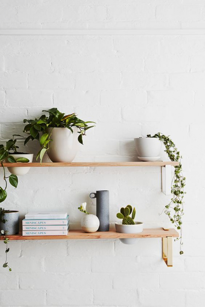 taobao wooden shelves plants minimalist