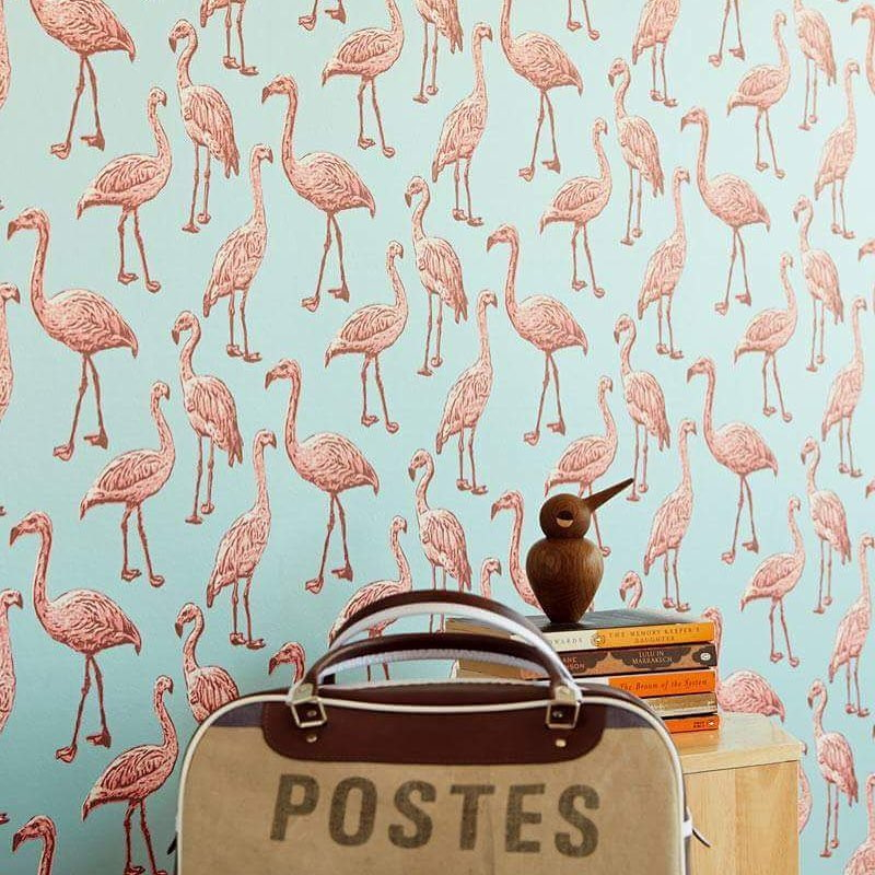 wallhub singapore wallpaper flamingo