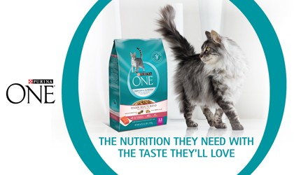 Purina One - Cat Image