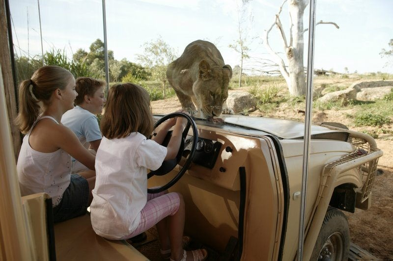 Werribee Open Range Zoo Safari tour exciting and unique things to do in Melbourne hidden places in australia