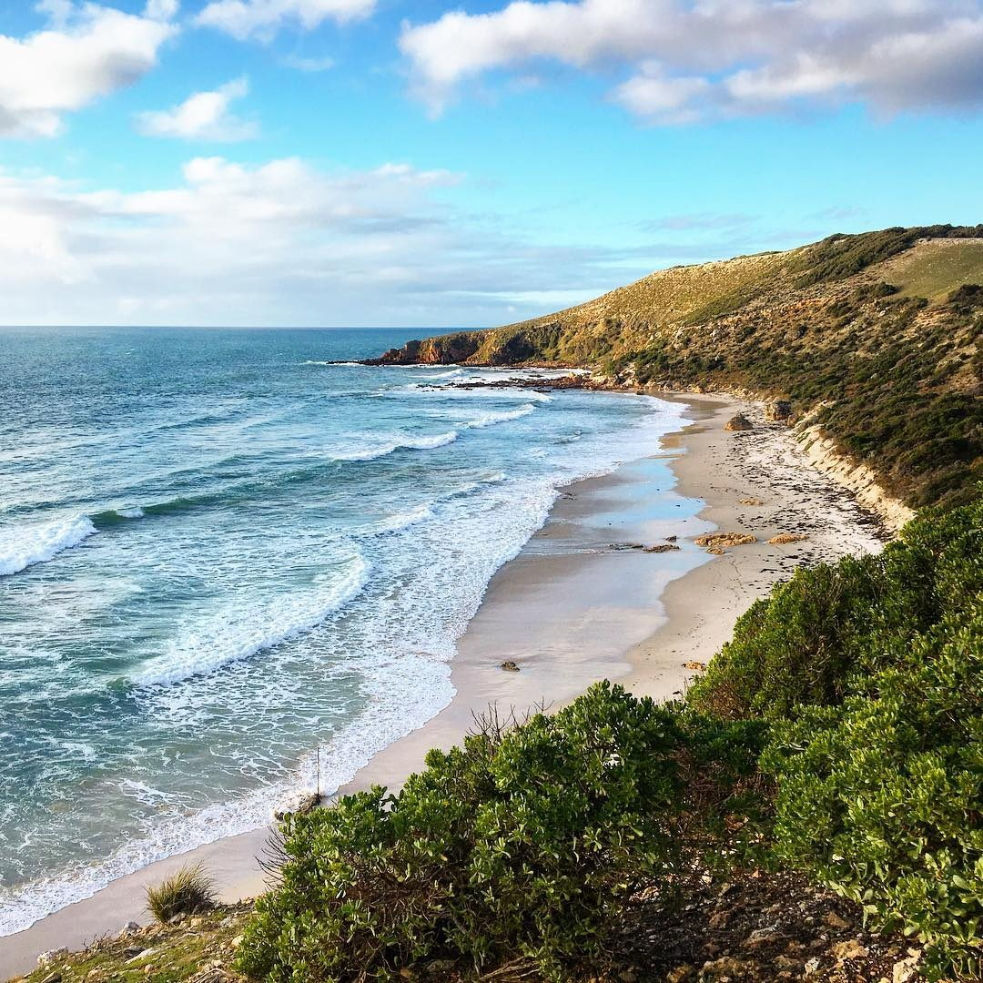 Kangaroo Island Beaches: 14 New Places To Discover In Australia's Major Cities On