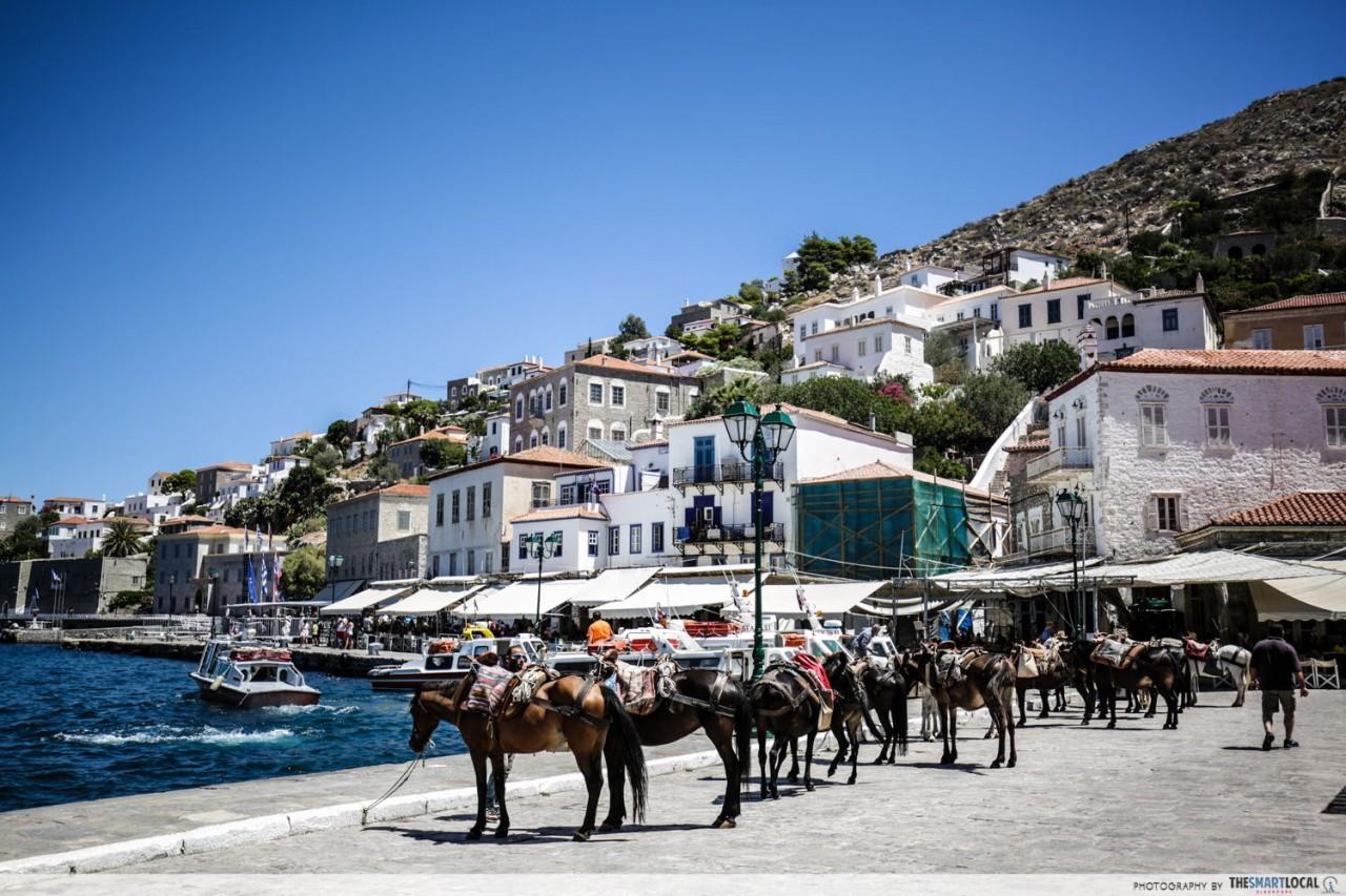 hydra island donkey transport greece