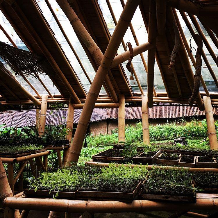 Bali Eco-Resorts - Bambu Indah Garden