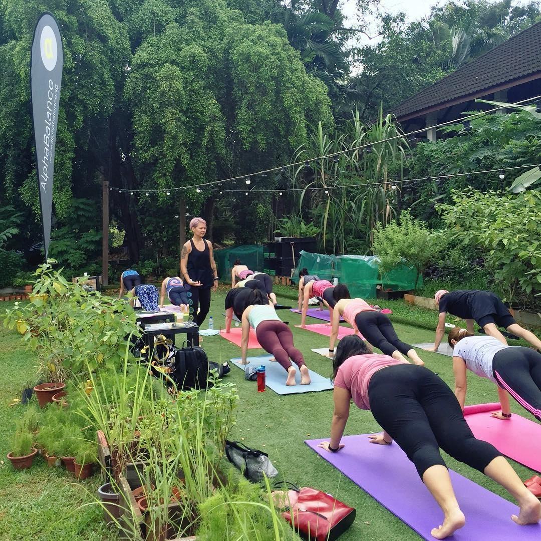 Social market yoga workshops