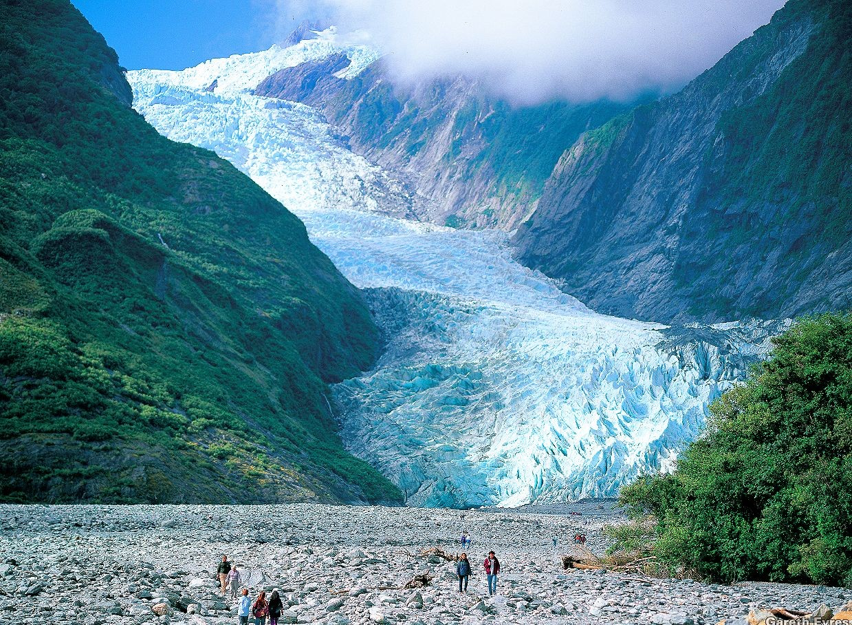 franz josef fox glacier new zealand