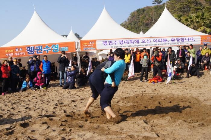 traditional Korean wrestling