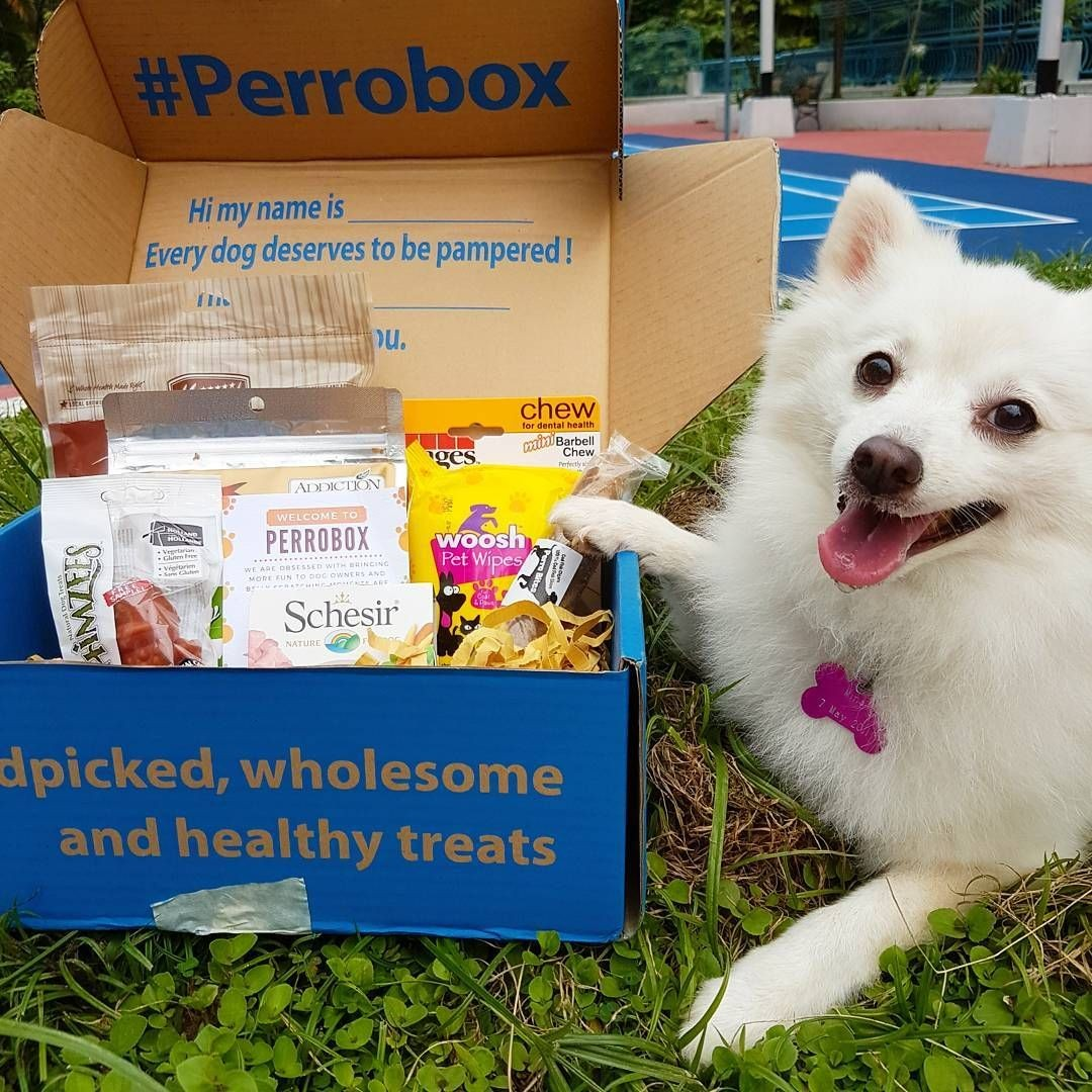 PerroBox subscription service