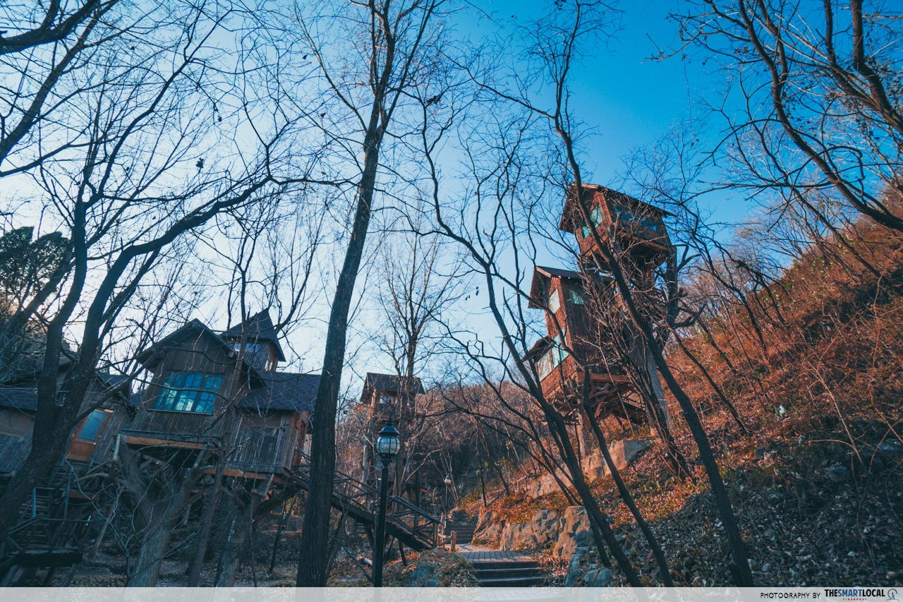 Treehouses in Red Leaves Valley Jinan unique lodging in china