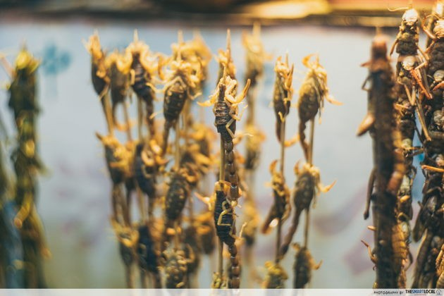Weird things to do in jinan china eat insects at furong street
