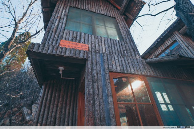 New things to do in China Red leaves valley Jinan treehouse
