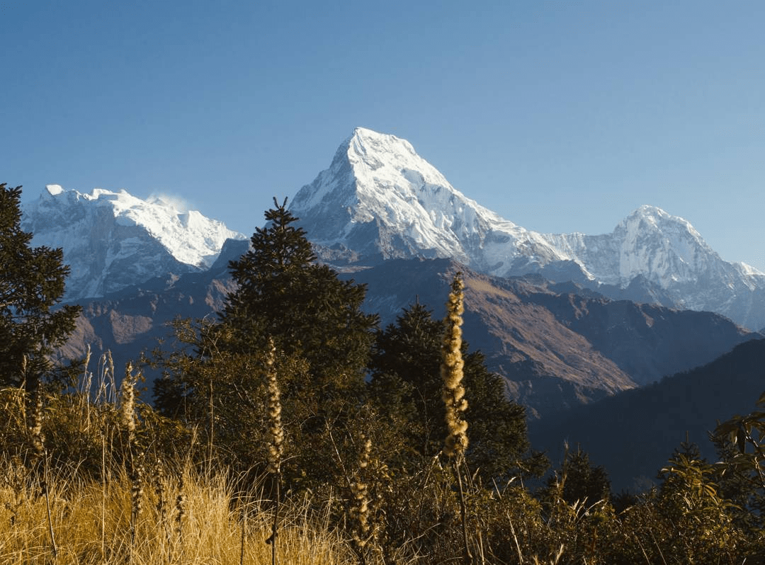view of snow capped himalayas from poon hill nepal