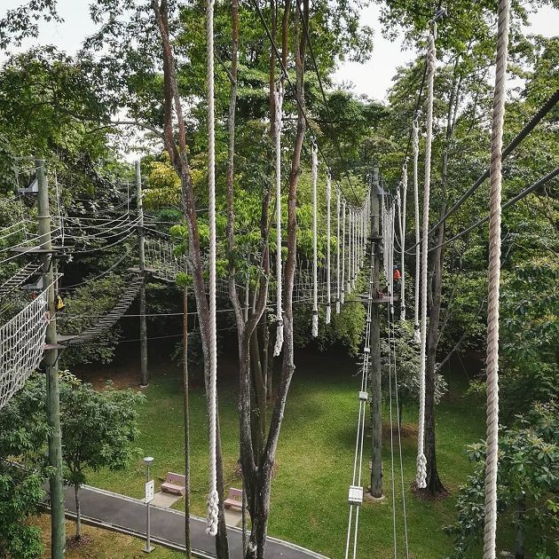 Navigating obstacles at the Yishun Safra Canopy Skywalk